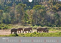 ELEFANTEN Asiens sanfte Riesen (Wandkalender 2019 DIN A4 quer) - Produktdetailbild 3