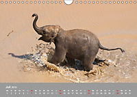 ELEFANTEN Asiens sanfte Riesen (Wandkalender 2019 DIN A4 quer) - Produktdetailbild 7
