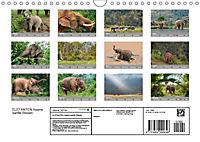 ELEFANTEN Asiens sanfte Riesen (Wandkalender 2019 DIN A4 quer) - Produktdetailbild 13