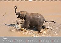ELEFANTEN Asiens sanfte Riesen (Wandkalender 2019 DIN A3 quer) - Produktdetailbild 7
