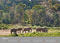 ELEFANTEN Asiens sanfte Riesen (Wandkalender 2019 DIN A2 quer) - Produktdetailbild 3
