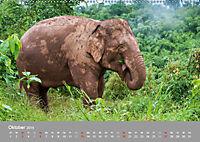 ELEFANTEN Asiens sanfte Riesen (Wandkalender 2019 DIN A2 quer) - Produktdetailbild 10