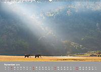 ELEFANTEN Asiens sanfte Riesen (Wandkalender 2019 DIN A2 quer) - Produktdetailbild 11