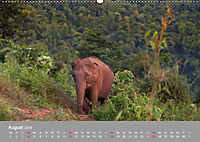 ELEFANTEN Asiens sanfte Riesen (Wandkalender 2019 DIN A2 quer) - Produktdetailbild 8