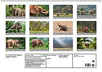 ELEFANTEN Asiens sanfte Riesen (Wandkalender 2019 DIN A2 quer) - Produktdetailbild 13