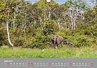 ELEFANTEN Asiens sanfte Riesen (Wandkalender 2019 DIN A3 quer) - Produktdetailbild 6