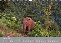ELEFANTEN Asiens sanfte Riesen (Wandkalender 2019 DIN A3 quer) - Produktdetailbild 8