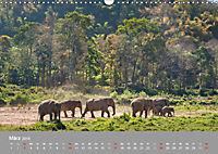 ELEFANTEN Asiens sanfte Riesen (Wandkalender 2019 DIN A3 quer) - Produktdetailbild 3
