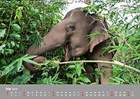 ELEFANTEN Asiens sanfte Riesen (Wandkalender 2019 DIN A3 quer) - Produktdetailbild 5