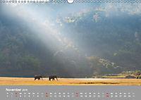 ELEFANTEN Asiens sanfte Riesen (Wandkalender 2019 DIN A3 quer) - Produktdetailbild 11