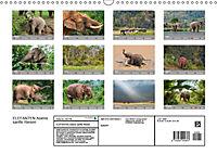 ELEFANTEN Asiens sanfte Riesen (Wandkalender 2019 DIN A3 quer) - Produktdetailbild 13
