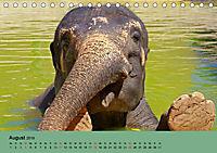 Elefanten. Badespaß am Strand (Tischkalender 2019 DIN A5 quer) - Produktdetailbild 8