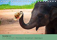 Elefanten. Badespaß am Strand (Tischkalender 2019 DIN A5 quer) - Produktdetailbild 11