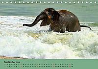 Elefanten. Badespaß am Strand (Tischkalender 2019 DIN A5 quer) - Produktdetailbild 9