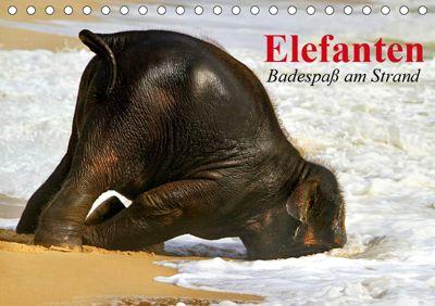Elefanten. Badespaß am Strand (Tischkalender 2019 DIN A5 quer), Elisabeth Stanzer
