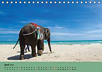 Elefanten. Badespaß am Strand (Tischkalender 2019 DIN A5 quer) - Produktdetailbild 4