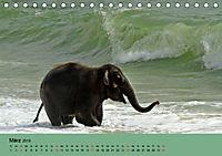 Elefanten. Badespaß am Strand (Tischkalender 2019 DIN A5 quer) - Produktdetailbild 3
