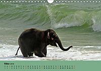 Elefanten. Badespaß am Strand (Wandkalender 2019 DIN A4 quer) - Produktdetailbild 3
