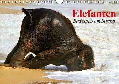 Elefanten. Badespaß am Strand (Wandkalender 2019 DIN A4 quer), Elisabeth Stanzer