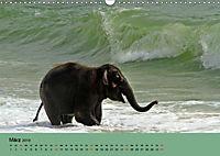 Elefanten. Badespaß am Strand (Wandkalender 2019 DIN A3 quer) - Produktdetailbild 3