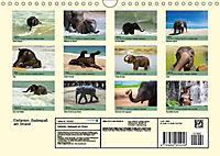 Elefanten. Badespaß am Strand (Wandkalender 2019 DIN A4 quer) - Produktdetailbild 13