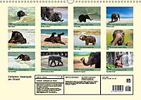Elefanten. Badespass am Strand (Wandkalender 2019 DIN A3 quer) - Produktdetailbild 13