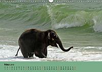 Elefanten. Badespass am Strand (Wandkalender 2019 DIN A3 quer) - Produktdetailbild 3