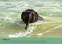 Elefanten. Badespass am Strand (Wandkalender 2019 DIN A2 quer) - Produktdetailbild 1