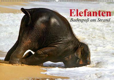 Elefanten. Badespass am Strand (Wandkalender 2019 DIN A2 quer), Elisabeth Stanzer