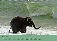 Elefanten. Badespass am Strand (Wandkalender 2019 DIN A2 quer) - Produktdetailbild 3