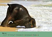 Elefanten. Badespass am Strand (Wandkalender 2019 DIN A2 quer) - Produktdetailbild 5