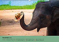 Elefanten. Badespass am Strand (Wandkalender 2019 DIN A2 quer) - Produktdetailbild 11