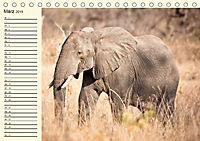 Elefanten - Graue Riesen (Tischkalender 2019 DIN A5 quer) - Produktdetailbild 3