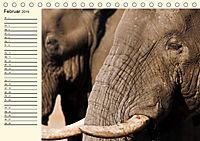 Elefanten - Graue Riesen (Tischkalender 2019 DIN A5 quer) - Produktdetailbild 2