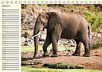 Elefanten - Graue Riesen (Tischkalender 2019 DIN A5 quer) - Produktdetailbild 7