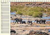 Elefanten - Graue Riesen (Tischkalender 2019 DIN A5 quer) - Produktdetailbild 9