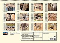Elefanten - Graue Riesen (Wandkalender 2019 DIN A2 quer) - Produktdetailbild 13