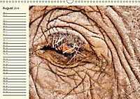 Elefanten - Graue Riesen (Wandkalender 2019 DIN A3 quer) - Produktdetailbild 8