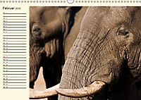 Elefanten - Graue Riesen (Wandkalender 2019 DIN A3 quer) - Produktdetailbild 2