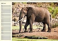 Elefanten - Graue Riesen (Wandkalender 2019 DIN A3 quer) - Produktdetailbild 7
