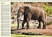 Elefanten - Graue Riesen (Wandkalender 2019 DIN A4 quer) - Produktdetailbild 7