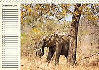 Elefanten - Graue Riesen (Wandkalender 2019 DIN A4 quer) - Produktdetailbild 12