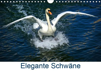Elegante Schwäne (Wandkalender 2019 DIN A4 quer), kattobello