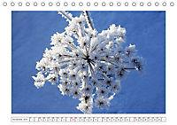 Eleganz in Weiss (Tischkalender 2019 DIN A5 quer) - Produktdetailbild 11