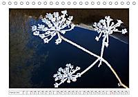 Eleganz in Weiss (Tischkalender 2019 DIN A5 quer) - Produktdetailbild 2