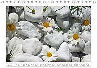 Eleganz in Weiss (Tischkalender 2019 DIN A5 quer) - Produktdetailbild 8