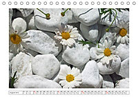 Eleganz in Weiß (Tischkalender 2019 DIN A5 quer) - Produktdetailbild 8