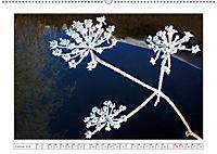 Eleganz in Weiss (Wandkalender 2019 DIN A2 quer) - Produktdetailbild 2