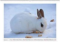 Eleganz in Weiß (Wandkalender 2019 DIN A2 quer) - Produktdetailbild 3