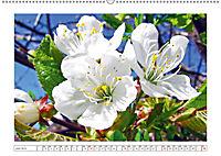 Eleganz in Weiss (Wandkalender 2019 DIN A2 quer) - Produktdetailbild 6